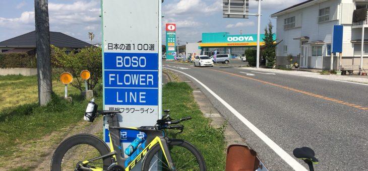 【チーム練】南房総ライド!100km!